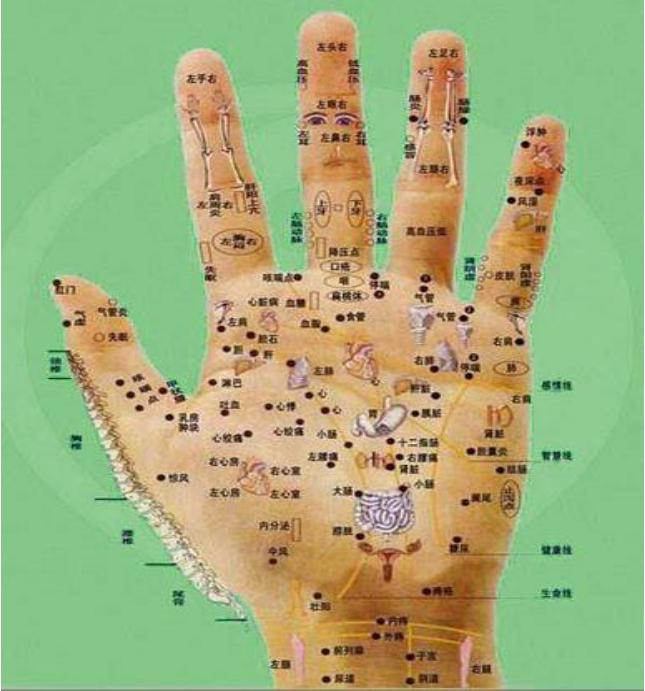 人體全息圖